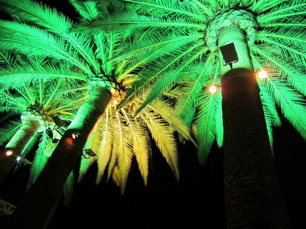 green light, electric lighting, illumination
